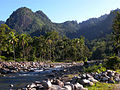 Kerinci Seblat river.jpg