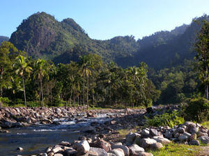 Kerinci Seblat National Park - A river in Kerinci Seblat National Park