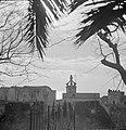 Kerkgebouwen met op de voorgrond een boom, Bestanddeelnr 252-0058.jpg