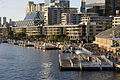 Kings wharf view from Pyrmont Bridge.jpg
