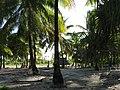 Kiribati(103).JPG