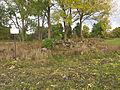 Kivikalme, Salu Karula küla nr 10558.jpg