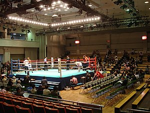 ECW/IWA Japan - Korakuen Hall.