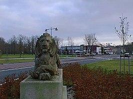 Leeuwen Kraggenburg