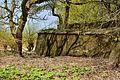 Kreis Pinneberg, Naturschutzgebiet 34 WDPA ID 30102 Haseldorfer Binnenelbe mit Elbvorland 12.jpg