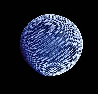 Compound eye Arthropod eye