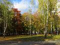 Kyiv Internatsionalny Park7.JPG