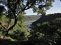 LORELEY - panoramio.jpg