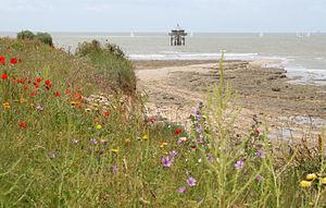 La Rochelle - Phare bout du monde (3).JPG