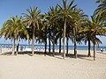 La plage de villajoiosa - panoramio (1).jpg