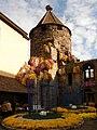 Lahr Chrysanthèmes 5.jpg