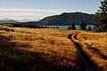 Lake Tekapo Landscape.NZ (13091463684).jpg