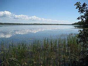 Photograph from one shore of a large pond about a mile across. The sky has clouds that are also seen in reflections from the pond.