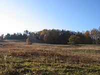 Landscape, Plainfield, MA.jpg