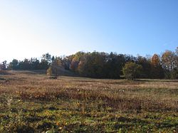 A typical field in Plainfield, Massachusetts