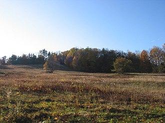 Plainfield, Massachusetts - A typical field in Plainfield, Massachusetts