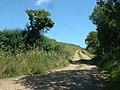Lane near the sewage works - geograph.org.uk - 209300.jpg