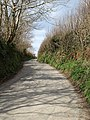 Lane to Delabole - geograph.org.uk - 734300.jpg
