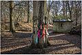 Lapjesboom stambruges.jpg