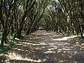 Le Croisic, Parc de Penn Avel, Pays de la Loire, France - panoramio.jpg