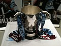 League Cup in AVFC colours.JPG