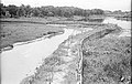 Leather Industrial Sewage Sludge and Fresh Waterbody Being Made - Science City Site - Calcutta 1993-07-26 225.JPG