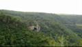 Les hauteurs de la forêt.png