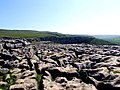 Limestone Pavement, Malham Cove - geograph.org.uk - 640664.jpg