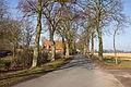 Lindenallee in Frankenfeld IMG 6256.jpg