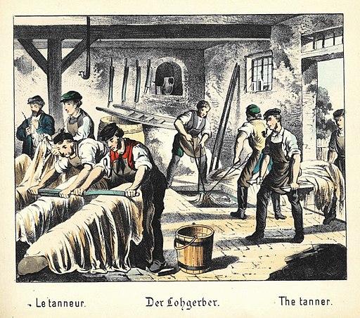 Lohgerber 1880