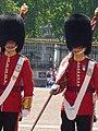 London 2010 (4718997446).jpg