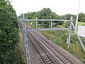 Looking north from the new bridge at Widford - August 2015 - panoramio.jpg