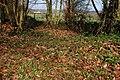 Looking out from Glenoe Glen - geograph.org.uk - 356976.jpg