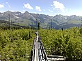 Lothar 12.09 dix ans plus tard - panoramio.jpg