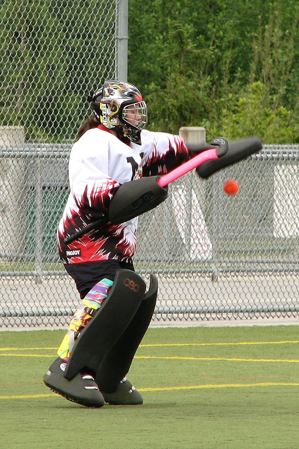 M060519 vit vipers-dragons 0071