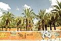 MADRID A.V.U. JARDIN-PARQUE DE PEÑUELAS PALMERAS - panoramio - Concepcion AMAT ORTA… (6).jpg