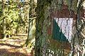 MOs810, WG 2013 21, OChK Baszkow Rochy, trails (5).JPG