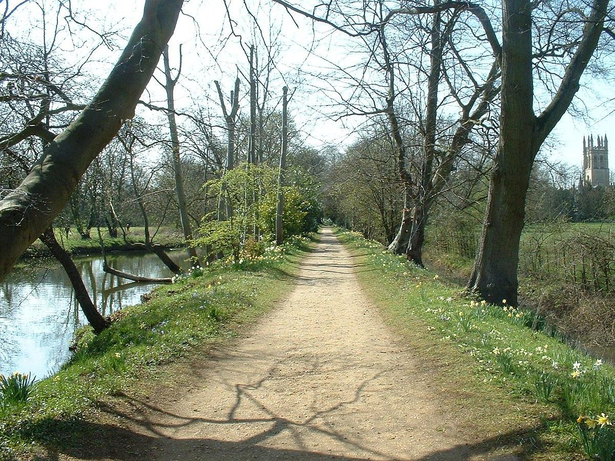 Addison's Walk - Wikipedia
