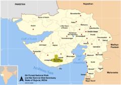 Distribuição atual, pequena região da floresta de Gir, na Índia.