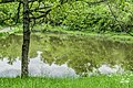 Mare de Mezeilles 03.jpg