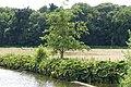 Markdal Breda P1080388.jpg