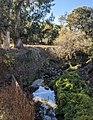 Matadero Creek with donkeys from Bol Park.jpg