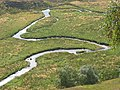 Meanders, Conglass Water. - geograph.org.uk - 51083.jpg