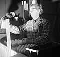 Medewerkster bezig met het schouwen van eieren, Bestanddeelnr 252-9079.jpg