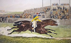Melton (horse) -  The 1885 Derby, Melton defeats Paradox