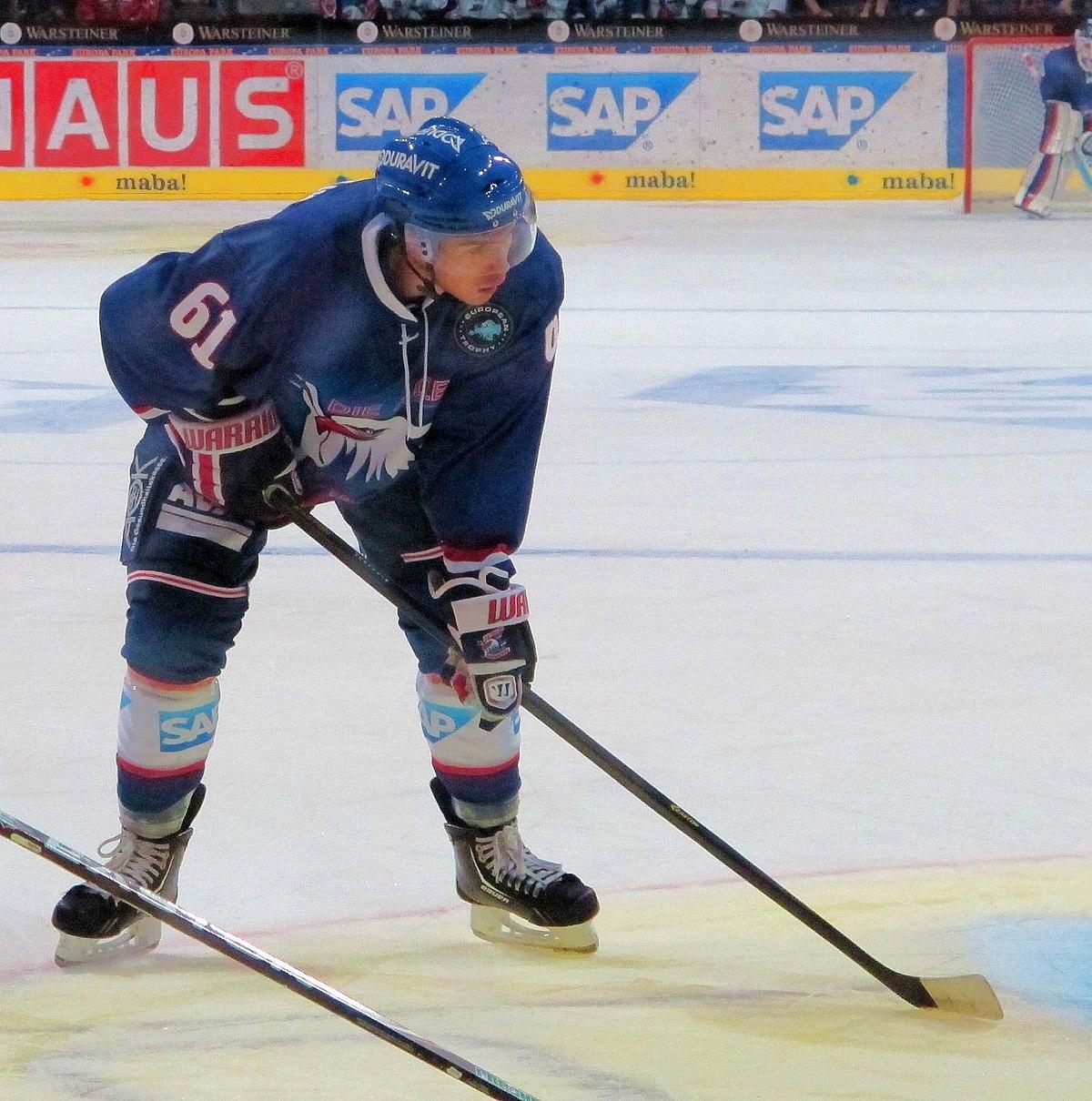 eishockeyspieler gehalt