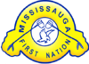 Official seal of Mississagi River 8