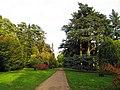 Mitchell Drive at Westonbirt Arboretum - geograph.org.uk - 69671.jpg