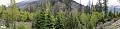Mixed Trees - Solang Valley - Kullu 2014-05-10 2599-2605 Archive.TIF