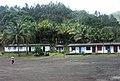 Moa - Cayo Guan - 2008 - panoramio.jpg